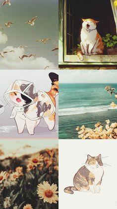 Cute cat and summer aesthetic Cat Wallpaper, Summer Aesthetic, Collage, Cats, Collages, Gatos, Collage Art, Cat, Kitty