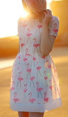 Flamingo Dress- I don't know why, but I find this ADORABLE.