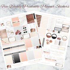 Free Marble & Rose Gold printable for Erin Codren & Recollections planner. - Planner Onelove