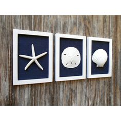 Cottage Chic Set of Beach Wall Art, Beach House Decor, Navy, Wall Art,... (€51) ❤ liked on Polyvore featuring home, home decor, wall art, navy blue home accessories, navy blue home decor, navy home decor, beach home accessories and burlap wall art