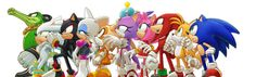 Sonic and company