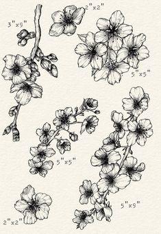 Cherry Blossom Drawing, Cherry Blossom Flowers, Cherry Blossom Tattoos, Cherry Blossom Outline, Cherry Blossom Tattoo Shoulder, Cherry Blossom Background, Black Tattoos, Small Tattoos, Owl Tattoos