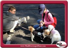 Kyle is mingling with a few dogs during the Dog Gone! Scavenger Hunt in New Hope, Pa. 9/14/13 #AuntHeather