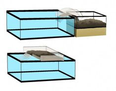 New Images turtles pet tanks Tips Young children use a pure involvement with the globe all over these folks, therefore it is no surprise why tu Aquatic Turtle Habitat, Aquatic Turtle Tank, Turtle Aquarium, Aquatic Turtles, Turtle Basking Area, Turtle Basking Platform, Turtle Pond, Turtle Tank Setup, Turtle Tanks