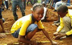 african school vegtable garden - Google Search Education And Development, African, Wrestling, Google Search, School, Garden, Lucha Libre, Garten, Lawn And Garden