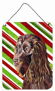 Boykin Spaniel Candy Cane Christmas Aluminium Metal Wall or Door Hanging Prints