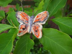 Motýl  Oranž