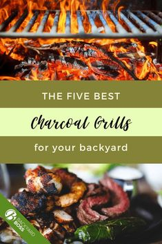 Have a ton of charcoal grill recipes to put to good use, but missing out on a dependable charcoal grill? This article briefly introduces and explores various grill designs and sizes to help you determine which is best for your grilling needs. Includes are some useful charcoal grill tips for use and cleaning to help you get started. #charcoalgrill #backyardbbq Best Charcoal Grill, Charcoal Bbq, Char Broil Grill, Barrel Grill, Charcoal Briquettes, Ceramic Grill, Offset Smoker, Natural Charcoal, Propane Gas Grill