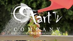 Economia doméstica #starttvcompany