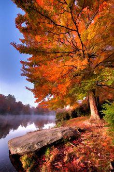 autumn scenes Peak Of Color - Blue Ridge Parkway - Price Lake, VA Blue Ridge Parkway, Beautiful World, Beautiful Places, Beautiful Pictures, Beautiful Scenery, Beautiful Artwork, Dame Nature, Autumn Scenes, Seasons Of The Year
