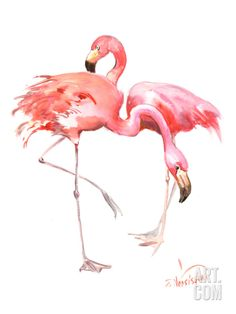 Flamingos Art Print by Suren Nersisyan at Art.com