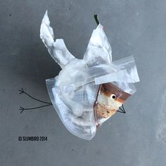 Slumbird New Portret by Slumbird Art Direction, Wordpress, Digital Art, Objects, Illustrations, Christmas Ornaments, Create, Holiday Decor, Pictures