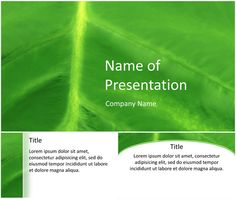 PowerPoint template made with a nice close-up of a green leaf with veins and details. Use this theme for presentation on environment, nature, plants, ecology, etc. Company Names, Lorem Ipsum, Close Up, Presentation, Templates, Backgrounds, Check, Nature, Free