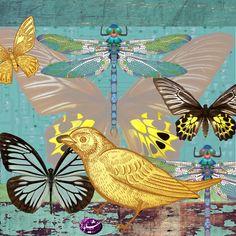 Shiva Art, Rooster, Artist, Animals, Animales, Animaux, Artists, Animal, Animais