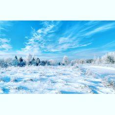 Merry Xstmas! #estonia #winter #wonderland