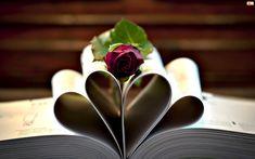 Miłosne, Książka, Róża, Kartki, Walentynki