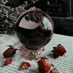 Look deep into the crystal ball. 🔮🔮 · · 📷: credit to photographer, tag if known · · · · · Wiccan, Witchcraft, Yule Wicca, Dark Fantasy, Yennefer Of Vengerberg, Modern Witch, Witch Aesthetic, Necromancer, The Villain