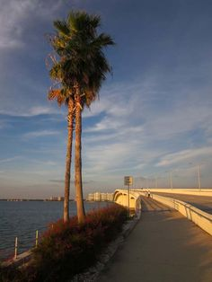 Walking Sunset - Sarasota, Florida by Lynn Wood,THIS IS A NEW BRIDGE THAT REPLACED THE ONE TORN DOWN ABOVE,IT TAKES YOU TO ST.ARMANDS