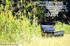 my friend's amazing photography + my owl city quote = fav  http://www.facebook.com/SidewalkEndsPhotography