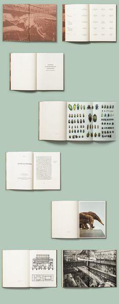 Rüsselkäfer, Mondfisch, Nashornvogel, Wisentkuh Editorial Design Graphic Design Photography