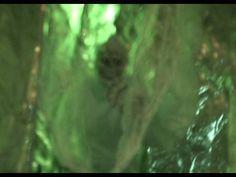 Shocking Alien abduction video .