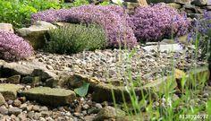 Nevada, Stepping Stones, Bali, Grass, Garden, Outdoor Decor, Joyful, Saints, Composters