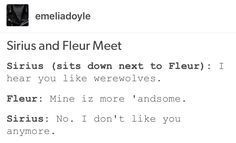 fleur delacour, harry potter, hp, Bill Weasley, Sirius black, Remus Lupin, wolfstar
