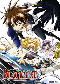 Black Cat Wall scroll - Train, Sven, Eve, Rinslet on a Mission Black Cat Manga, Black Cats, Otaku, Best Anime Shows, Cat Fountain, Animes To Watch, Cat Icon, Chinese Cartoon, Cat Background