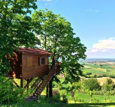 #Italy's best tree houses for grownups #travel