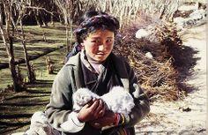 Tibetan Girl with newborn lamb - a village on the Tibetan Plateau