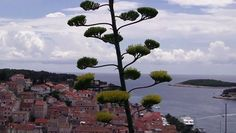 Najpiękniejsze miejsca w Chorwacji - Twierdza Spanjola - Hvar. http://www.dailymotion.com/video/x3ojkbt_hvar-z-fortecy-spanjola_travel #hvar #chorwacja #croatia