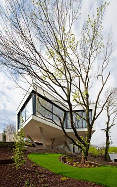 HOUSE-BETWEEN-THE-TREES-Sebo-Lichy-8