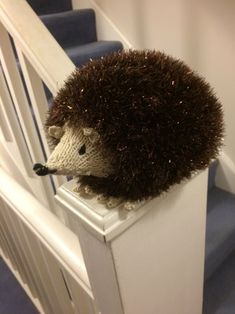 Hedgehog knitting project by Alison D