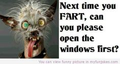 next time you fart