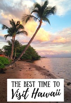 The best time to visit Hawaii depends on what you plan to see. This guide includes top attractions for each season and tips on the cheapest time to fly! #hawaii #traveltips #hawaiitips