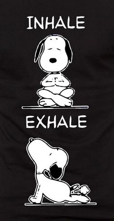 [Image] Lets all have a great week and breathe in and breathe out! Snoopy Love, Charlie Brown And Snoopy, Beagle, Coffee Cup Art, Cartoon Crazy, Snoopy Comics, Snoopy Wallpaper, Snoopy Quotes, Dog Jewelry