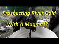 Prospecting River Gold With A Magnet! Minerals And Gemstones, Rocks And Minerals, Gold Sluice, Gold Deposit, Gem Hunt, Magnet Fishing, Panning For Gold, Gold River, Gold Prospecting
