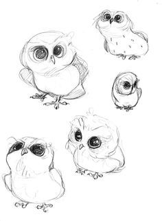 65 Ideas For Bird Drawing Tattoo Character Design Baby Animal Drawings, Animal Sketches, Bird Drawings, Cute Drawings, Drawing Sketches, Drawing Animals, Drawing Tips, Cute Owl Drawing, Sketching