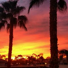 Sunrise in California (in Palm Springs Oasis)...nothin' better... ~D~