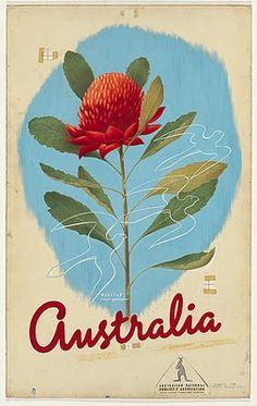 waratah vintage poster