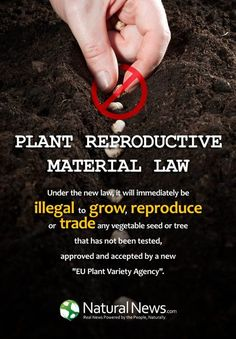 "If the EU gets its way, all seeds must be ""registered"" and approved by the government. Anyone using non-registered heirloom seeds will be arrested. WAKE UP! This is happening... http://www.naturalnews.com/040214_seeds_European_Commission_registration.html"