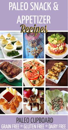 Paleo Snack and Appetizer Recipes - www.PaleoCupboard.com