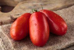 A Blue Ribbon Winning Fresh Salsa Recipe - Straight From The Garden! Fresh Salsa Recipe, Tomato Salsa Recipe, Chocolate Strawberry Pie, Mild Salsa, San Marzano Tomatoes, Homemade Salsa, Stuffed Jalapeno Peppers, Mexican Dishes, Cooking Recipes