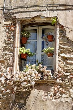 Charming little château in France Garden Windows, Old Windows, Windows And Doors, Window View, Through The Window, Old Doors, Window Boxes, Door Knockers, Gates