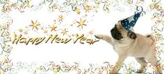 Pug Holiday Themed Facebook Cover Photos For Your Timeline. Pug New Year Facebook Cover Photo