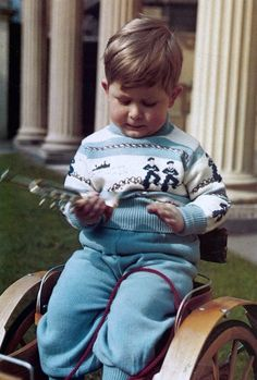 Prince Charles. What happened? He used to be so cute...