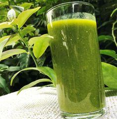 Ora-Pro-Nobis - nesta planta está a solução de muitas doenças.