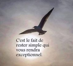 Quote Citation, Best Inspirational Quotes, Best Quotes, Life Quotes, Positive Attitude, Positive Quotes, Rester Simple, French Words Quotes, Life Tips