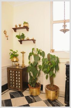 Sophisticated Simplicity brass corner (Philodendron scandens is used in the containers as a way to green up the room. In India it is considered good luck to have such plants in one's home) Ethnic Home Decor, Indian Home Decor, Diy Home Decor, Indian Decoration, Traditional Decor, Traditional House, India Decor, Diy Garden Furniture, Wood Furniture