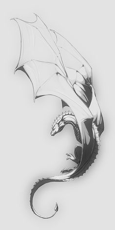 On the wing by nybird on DeviantArt Tattoo Design Drawings, Art Drawings Sketches, Walpapers Cute, Dragon Sketch, Dragon Artwork, Creature Drawings, Dragon Tattoo Designs, Dragon Pictures, Fantasy Dragon